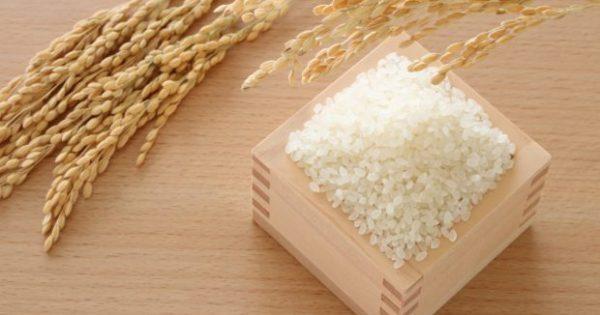 Να Γιατί Πρέπει να Βάλετε ένα Δοχείο με Ρύζι στην Ντουλάπα σας
