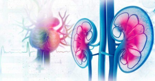 Καρκίνος νεφρού: Συμπτώματα και σημάδια που επιβάλλεται να ξέρουμε όλοι!!!