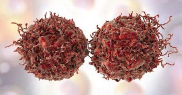 Επιστρέφει απειλητικά παμπάλαιος ιός που προκαλεί καρκίνο