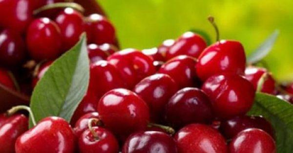 Κεράσια: γλυκά σαν αμαρτία, ευεργετικά σαν φάρμακο – κοινωνία