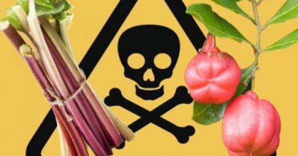 Μεγάλη Προσοχή: Έμφραγμα και εγκεφαλικό: Κίνδυνος από ουσία σε βασικές τροφές – Δείτε ποιες έιναι