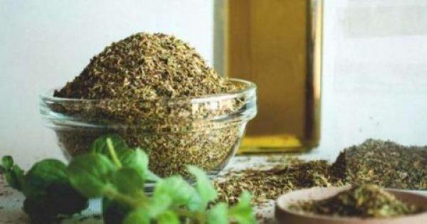 Ρίγανη: Οι θεραπευτικές και θρεπτικές της ιδιότητες