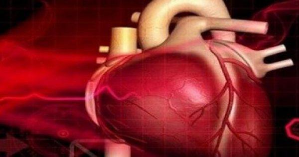 Εντοπίστηκε ουσία που «ξανανιώνει» την καρδιά – Δείτε τι ανακάλυψε η νέα επιστημονική έρευνα
