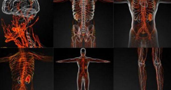 """Αταξία γλουτένης: Προσβάλλει το νευρικό σύστημα. Τα """"αθώα"""" συμπτώματα"""
