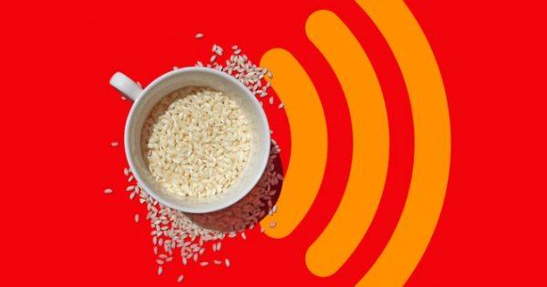 Ρύζι: Τα αυξανόμενα επίπεδα του διοξειδίου μειώνουν τη θρεπτική του αξία