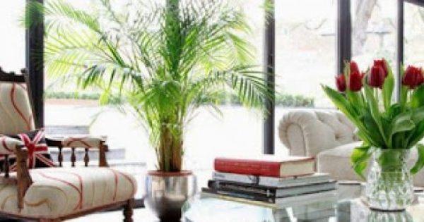 Το αντικείμενο που πρέπει να πετάξετε για να έχετε καλή ενέργεια στο σπίτι