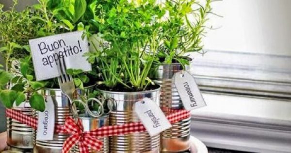 Φρέσκα μυρωδικά:Καλλιεργήστε τα στο μπαλκόνι σας