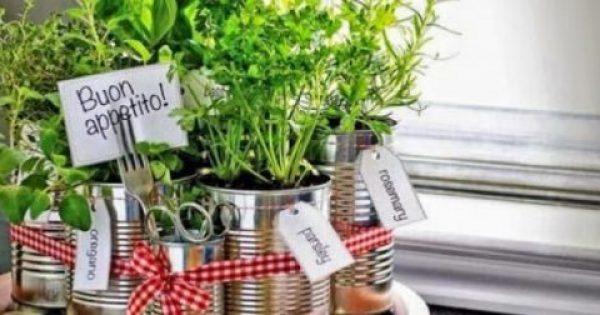 Φρέσκα μυρωδικά: Καλλιεργήστε τα στο μπαλκόνι σας