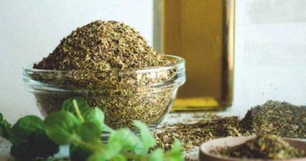 Ρίγανη: Το ταπεινό φυτό που θεραπεύει σχεδόν τα πάντα και δεν κοστίζει τίποτα