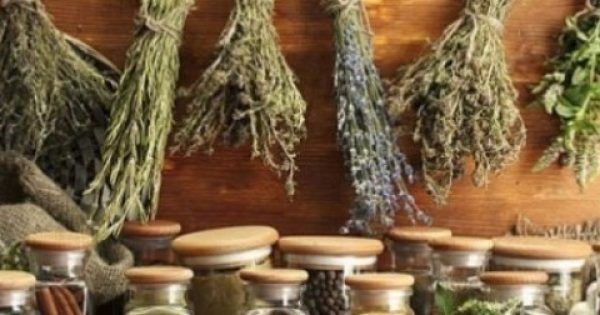 Μερικά από τα καλύτερα Ελληνικά βότανα!