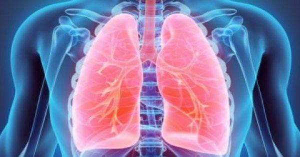 Οι τροφές που βοηθούν στον καθαρισμό των πνευμόνων από τη νικοτίνη του τσιγάρου