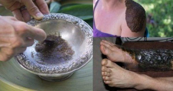 Αυτό το μαγικό φυτό θεραπεύει τα κατάγματα των οστών και θεραπεύει και πολλές άλλες ασθένειες