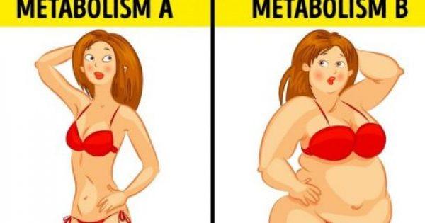 Πώς είναι μία μεταβολική δίαιτα και γιατί έχει τόσο καλά αποτελέσματα