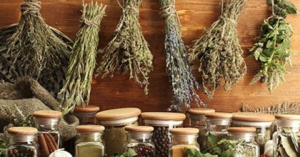 Ποιο θαυματουργό βότανο σκοτώνει τα μικρόβια σε λιγότερο από μια ώρα;
