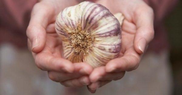 Πώς να καταναλώσετε το υγιέστερο φάρμακο στον κόσμο, το σκόρδο… και να αποφύγετε τη δυσάρεστη μυρωδιά του!