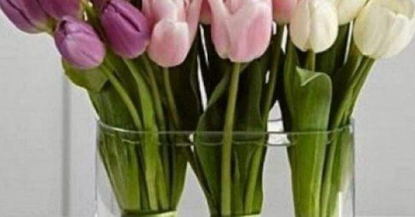 Πως θα παραμείνουν φρέσκα τα λουλούδια στο βάζο