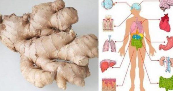 Να τι θα συμβεί στο σώμα σας αν φάτε Τζίντζερ (πιπερόριζα) για ένα μήνα