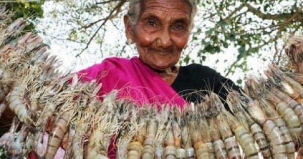 Ινδή Γιαγιά 106 Ετών (!) Μαγειρεύει Στο YouTube & γίνεται Αστέρι! 7 Εκ. Views Οι Συνταγές Της -ΒΙΝΤΕΟ