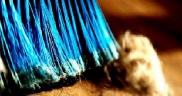 Όσο απίστευτο και αν ακούγεται η βρωμιά του σπιτιού μας μαρτυρά την… ταυτότητά μας – Δείγμα σκόνης αποκαλύπτει τα πάντα!
