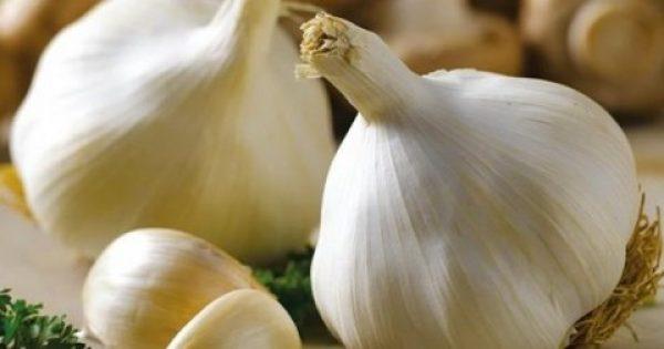 Τα θαύματα του σκόρδου! Δείτε τι γίνεται όταν τρώμε σκόρδο με άδειο στομάχι.