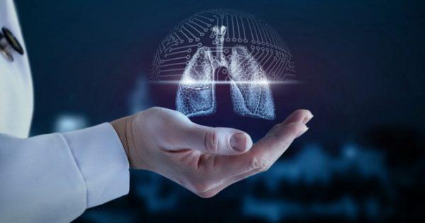 Μεταμοσχεύθηκαν με επιτυχία για πρώτη φορά σε πειραματόζωα πνεύμονες δημιουργημένοι στο εργαστήριο