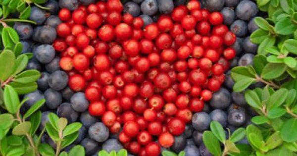 Το φρούτο που μειώνει κατά 40% τον κίνδυνο καρδιοπάθειας