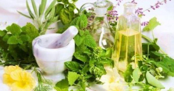 9 βότανα και λαχανικά που μπορούν να αντικαταστήσουν το αλάτι