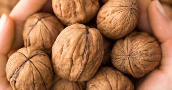 Μάθε γιατί πρέπει να τρώμε… ακριβώς εφτά καρύδια την ημέρα!