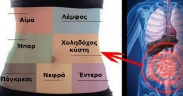 Πως θα αποτοξινώσετε κάθε όργανο του σώματός σας ξεχωριστά