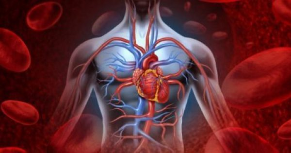 Καθαρίστε αρτηρίες, καρδιά και νεφρά σε 72 ώρες με φυσικό τρόπο