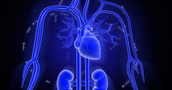 Τεστ: Δείτε πόσων ετών είναι η καρδιά σας!