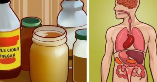 Τα 10 πιο γνωστά Φυσικά Αντιβιοτικά που είναι γνωστά σε όλο τον Κόσμο
