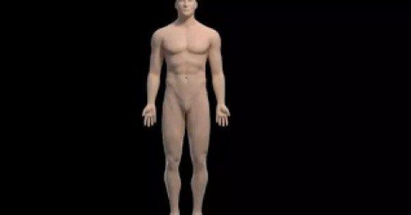 Αυτό είναι το σημείο του σώματος που μας λέει… πόσα χρόνια θα ζήσουμε!