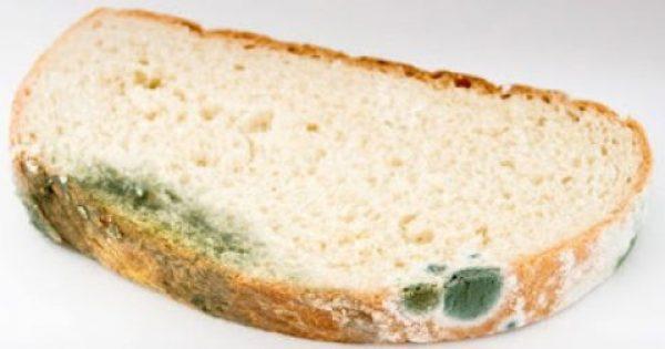 Γιατί δεν πρέπει να τρώμε ούτε το καθαρό κομμάτι ενός μουχλιασμένου τρόφιμου