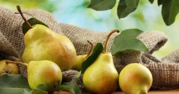Ποιες φθινοπωρινές τροφές θα σας βοηθήσουν να χάσετε βάρος;