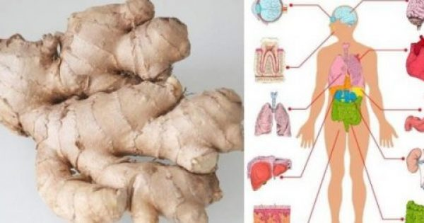 Να τι θα συμβεί στο σώμα σας αν φάτε Τζίντζερ (πιπερόριζα) για 1 μήνα
