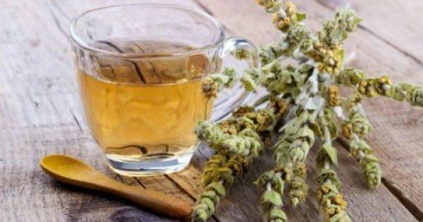 Τσάι του βουνού Θαυματουργό: Ποια σοβαρή νόσο καταπολεμά σε 6 μήνες. Πιείτε το άφοβα