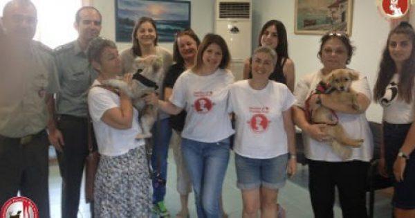 Το 424 Στρατιωτικό Νοσοκομείο είναι το πρώτο στην Ελλάδα με σκύλους θεραπείας