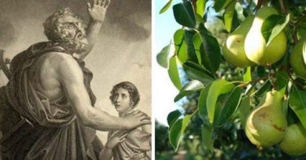 Το φρούτο που ο Όμηρος ονόμαζε «Δώρο Των Θεών» – Μας προστατεύει από 6 ασθένειες