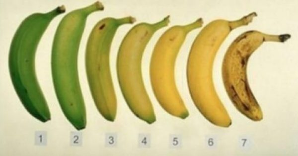 Ποια από αυτές τις μπανάνες είναι η καλύτερη επιλογή