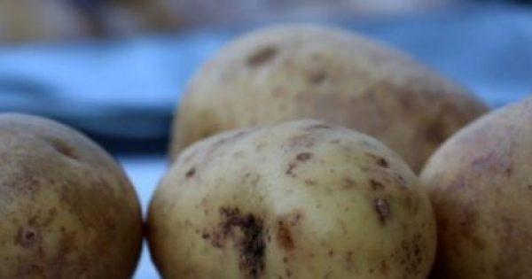 Αν δείτε αυτό στις πατάτες, πρέπει να τις πετάξετε – Κίνδυνος νευρολογικού προβλήματος
