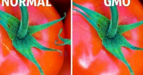 Τρεις απλοί τρόποι να ξεχωρίσετε τα οργανικά από τα μεταλλαγμένα τρόφιμα